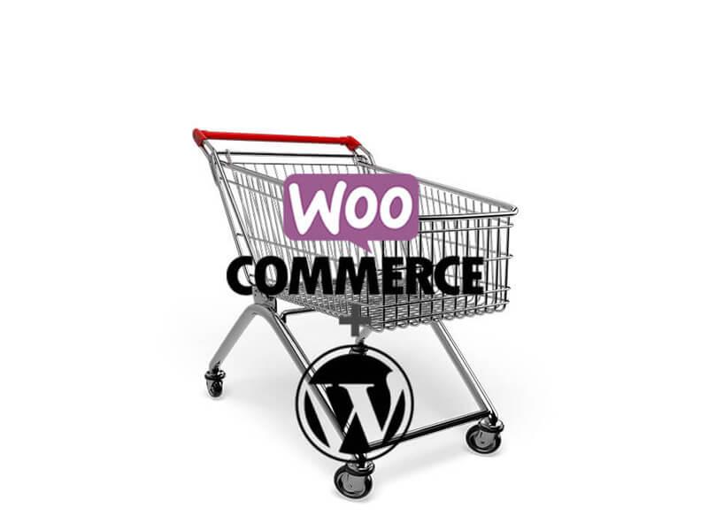 รับออกแบบ และจัดทำเว็บไซต์ขายสินค้าออนไลน์ด้วย wordpress